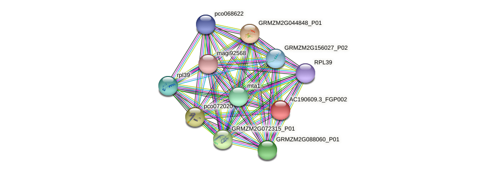 AC190609.3_FGP002 protein (Zea mays) - STRING interaction network