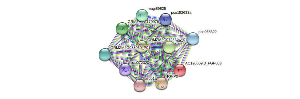 AC190609.3_FGP003 protein (Zea mays) - STRING interaction network