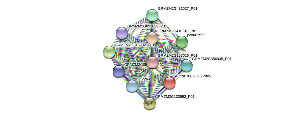 AC190788.2_FGP005 protein (Zea mays) - STRING interaction network