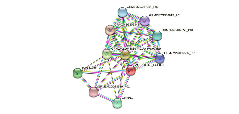 AC190834.3_FGP005 protein (Zea mays) - STRING interaction network