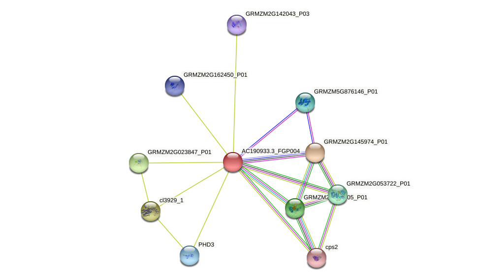 AC190933.3_FGP004 protein (Zea mays) - STRING interaction network