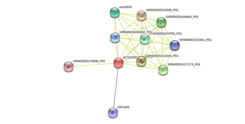 AC191050.3_FGP003 protein (Zea mays) - STRING interaction network