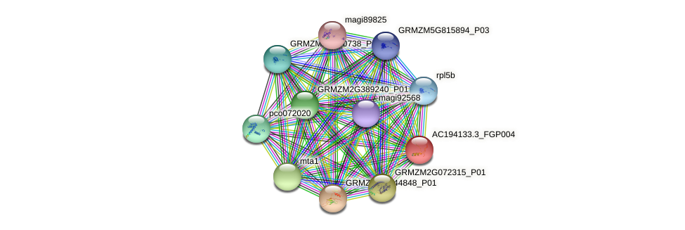 AC194133.3_FGP004 protein (Zea mays) - STRING interaction network