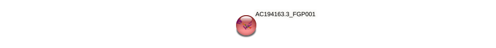 AC194163.3_FGP001 protein (Zea mays) - STRING interaction network