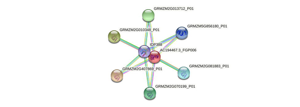 AC194467.3_FGP006 protein (Zea mays) - STRING interaction network