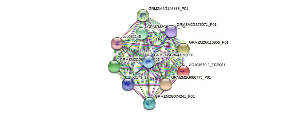 AC194670.2_FGP001 protein (Zea mays) - STRING interaction network