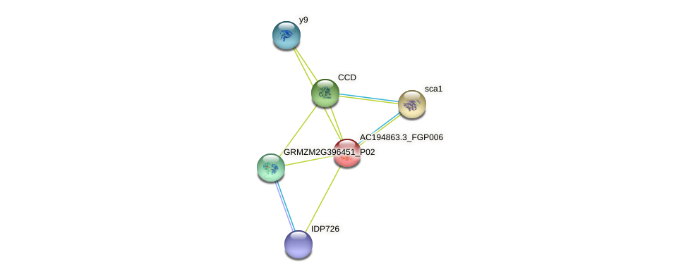 AC194863.3_FGP006 protein (Zea mays) - STRING interaction network