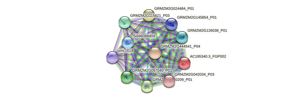 AC195340.3_FGP002 protein (Zea mays) - STRING interaction network
