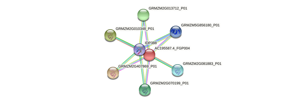 AC195587.4_FGP004 protein (Zea mays) - STRING interaction network