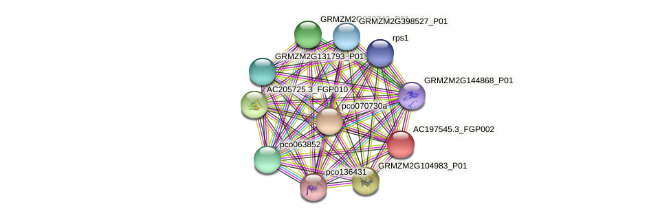 AC197545.3_FGP002 protein (Zea mays) - STRING interaction network