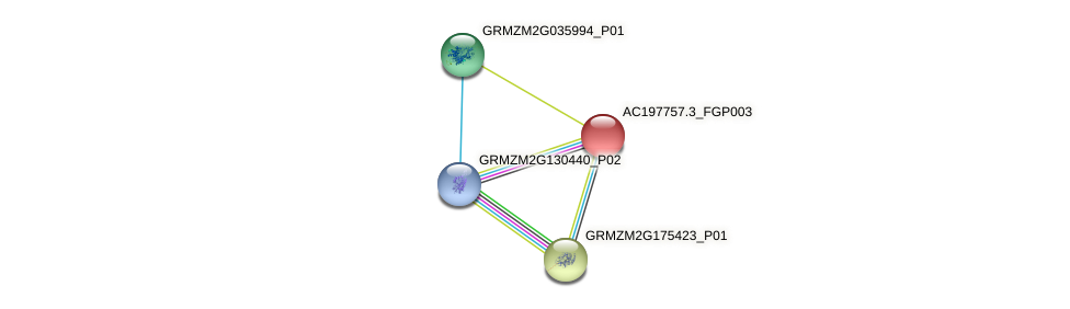 AC197757.3_FGP003 protein (Zea mays) - STRING interaction network