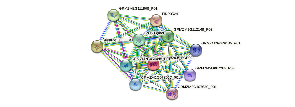 100194360 protein (Zea mays) - STRING interaction network