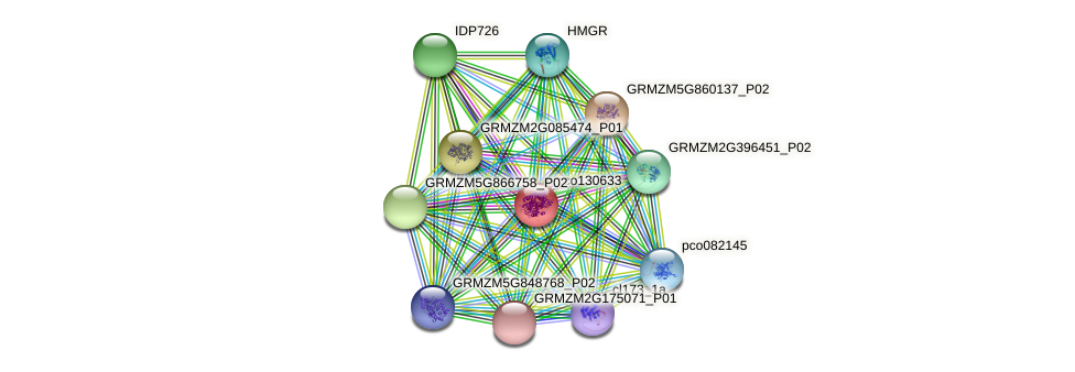 pco130633 protein (Zea mays) - STRING interaction network