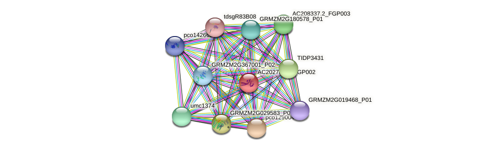 Zm.126871 protein (Zea mays) - STRING interaction network