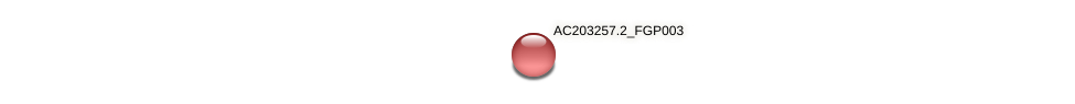 AC203257.2_FGP003 protein (Zea mays) - STRING interaction network