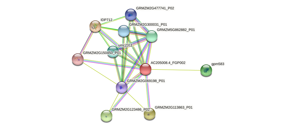 AC205008.4_FGP002 protein (Zea mays) - STRING interaction network