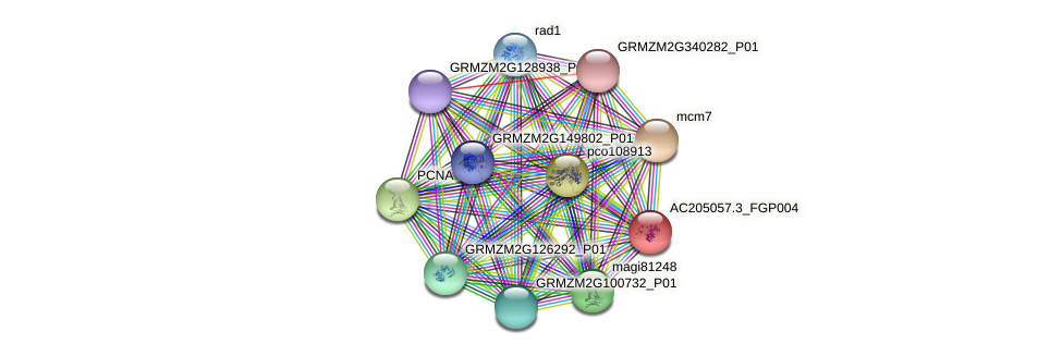 AC205057.3_FGP004 protein (Zea mays) - STRING interaction network
