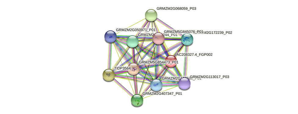 AC208327.4_FGP002 protein (Zea mays) - STRING interaction network