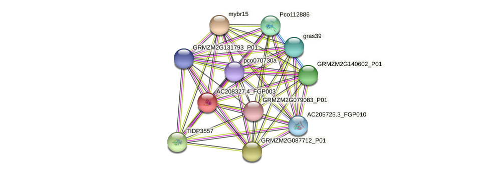 AC208327.4_FGP003 protein (Zea mays) - STRING interaction network
