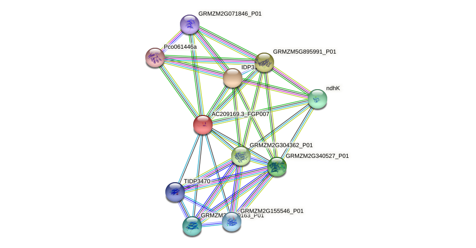 AC209169.3_FGP007 protein (Zea mays) - STRING interaction network
