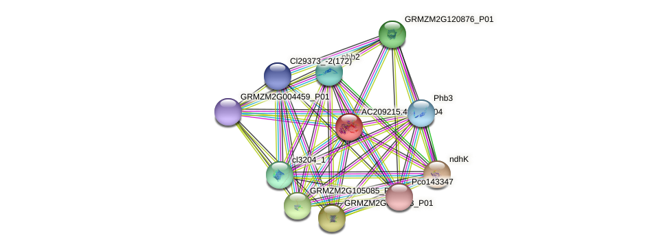 AC209215.4_FGP004 protein (Zea mays) - STRING interaction network