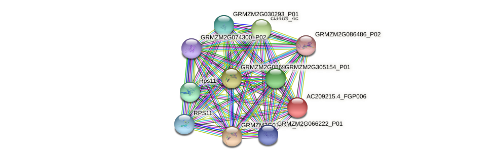 AC209215.4_FGP006 protein (Zea mays) - STRING interaction network