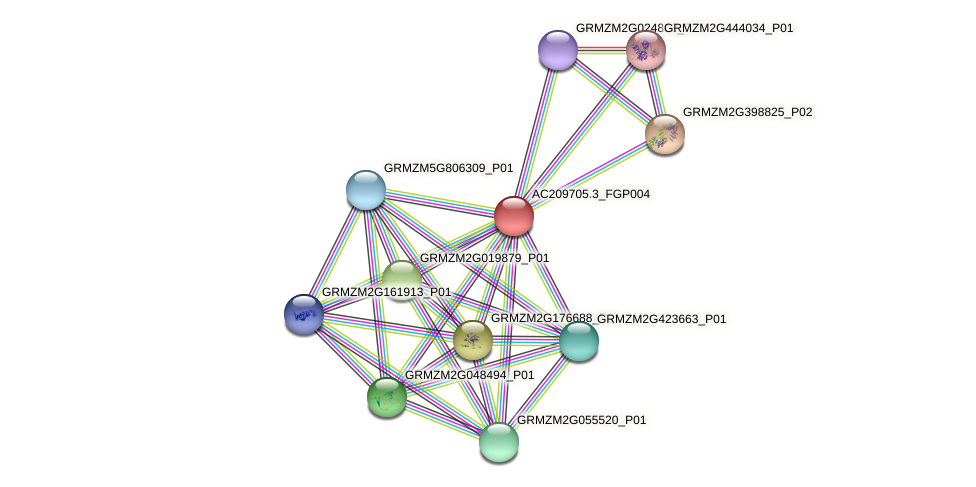 Zm.35710 protein (Zea mays) - STRING interaction network