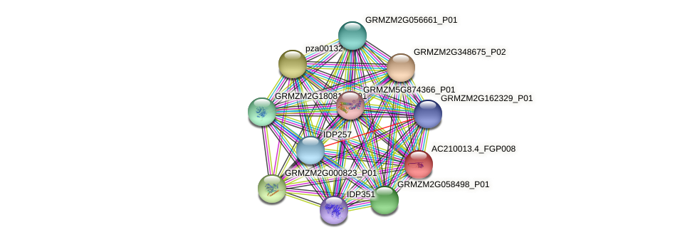 AC210013.4_FGP008 protein (Zea mays) - STRING interaction network