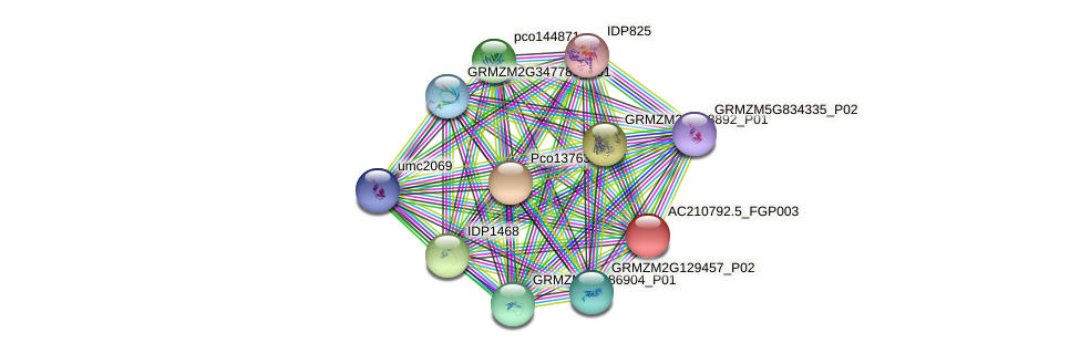 AC210792.5_FGP003 protein (Zea mays) - STRING interaction network