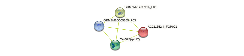 AC211652.4_FGP001 protein (Zea mays) - STRING interaction network