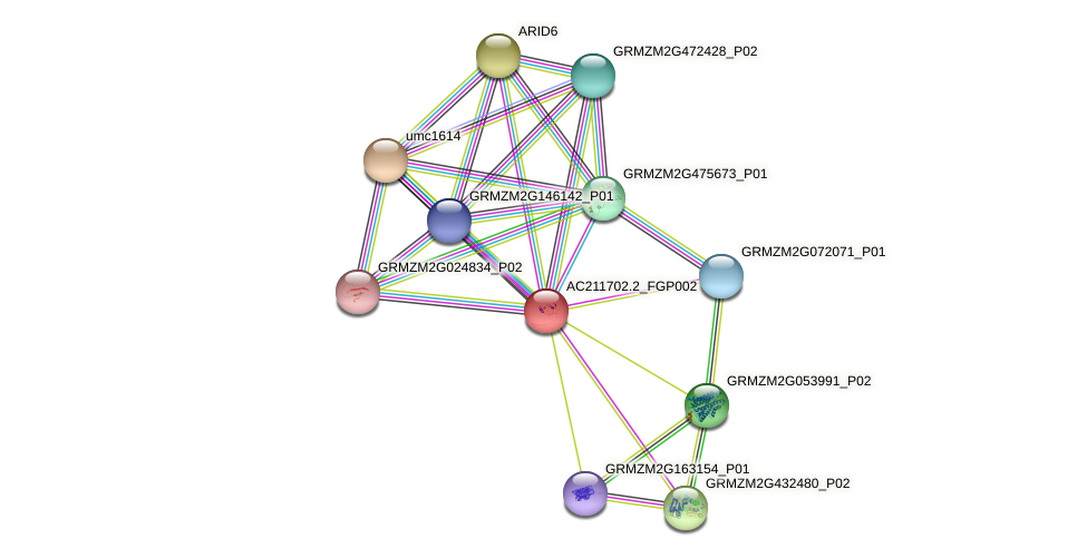 AC211702.2_FGP002 protein (Zea mays) - STRING interaction network