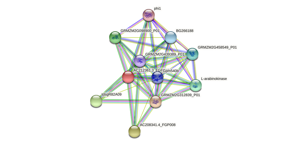 AC212361.3_FGP010 protein (Zea mays) - STRING interaction network