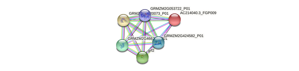 AC214040.3_FGP009 protein (Zea mays) - STRING interaction network