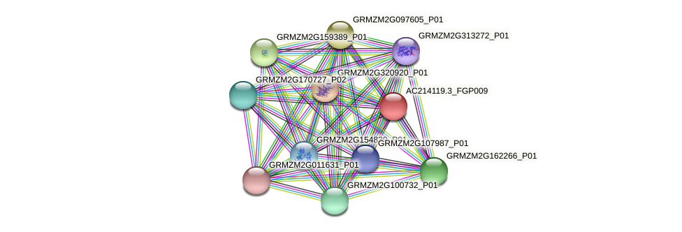 AC214119.3_FGP009 protein (Zea mays) - STRING interaction network