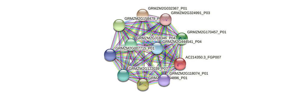 AC214350.3_FGP007 protein (Zea mays) - STRING interaction network