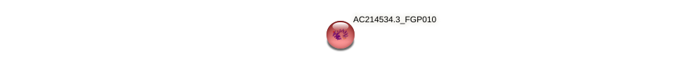 AC214534.3_FGP010 protein (Zea mays) - STRING interaction network