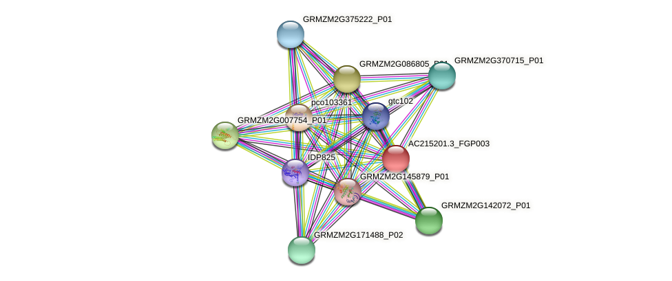 Zm.31128 protein (Zea mays) - STRING interaction network
