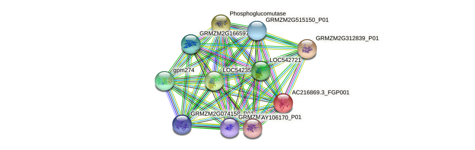 AC216869.3_FGP001 protein (Zea mays) - STRING interaction network