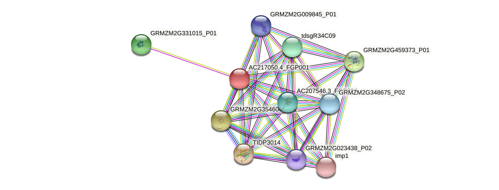 AC217050.4_FGP001 protein (Zea mays) - STRING interaction network