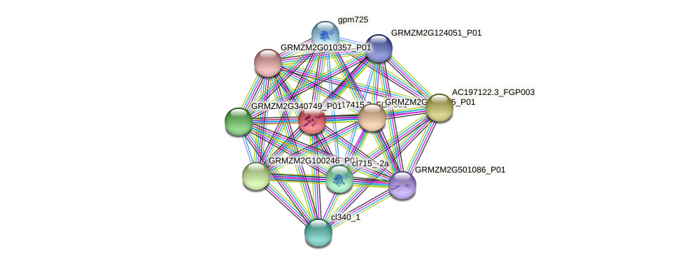 AC217415.3_FGP001 protein (Zea mays) - STRING interaction network