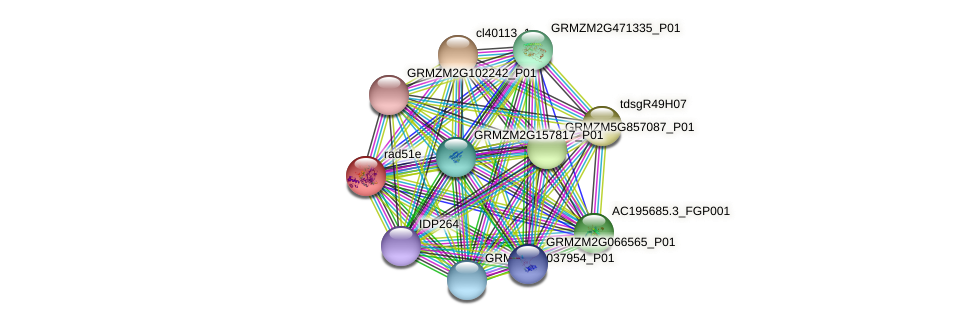 AC219006.2_FGP007 protein (Zea mays) - STRING interaction network