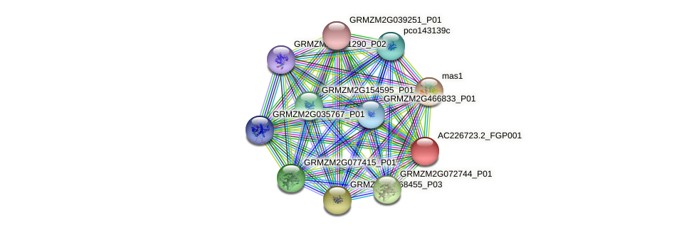 AC226723.2_FGP001 protein (Zea mays) - STRING interaction network