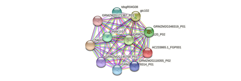 AC233865.1_FGP001 protein (Zea mays) - STRING interaction network