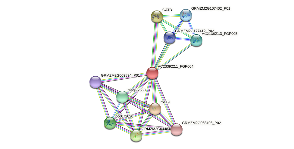 AC233922.1_FGP004 protein (Zea mays) - STRING interaction network