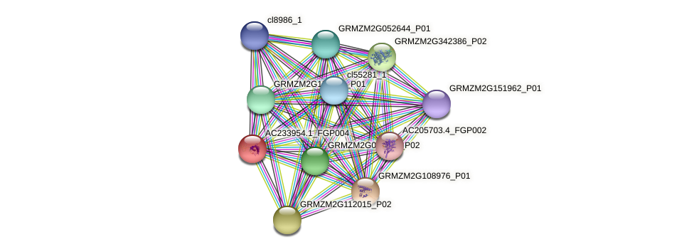 AC233954.1_FGP004 protein (Zea mays) - STRING interaction network