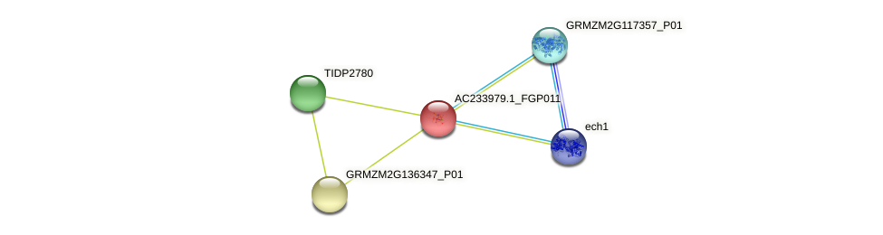 AC233979.1_FGP011 protein (Zea mays) - STRING interaction network