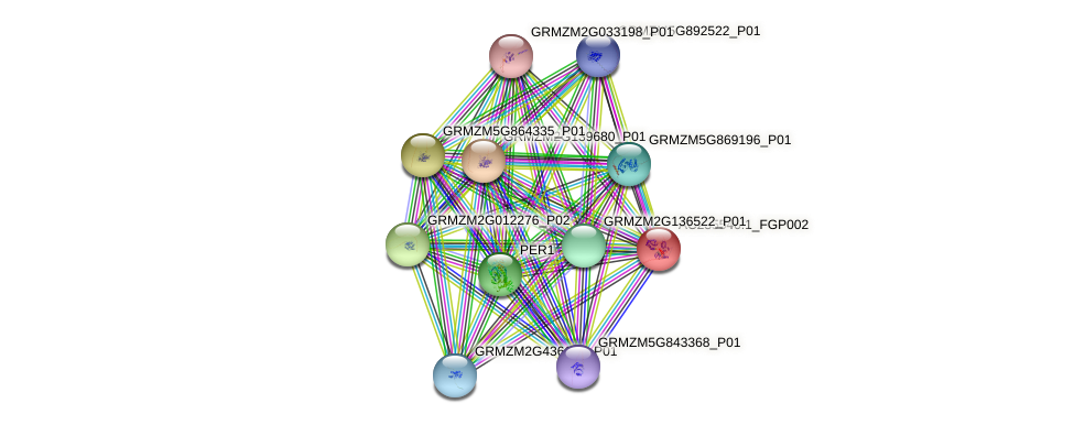 AC235546.1_FGP002 protein (Zea mays) - STRING interaction network