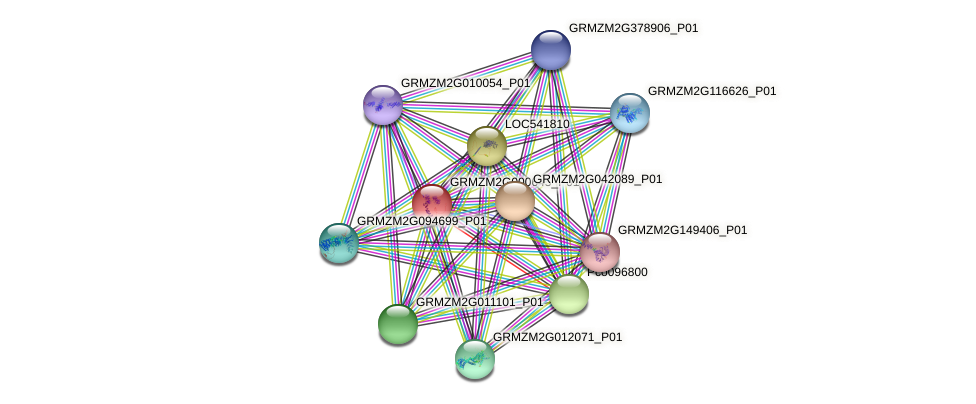 GRMZM2G000645_P01 protein (Zea mays) - STRING interaction network