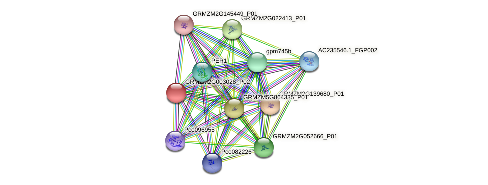 GRMZM2G003028_P02 protein (Zea mays) - STRING interaction network