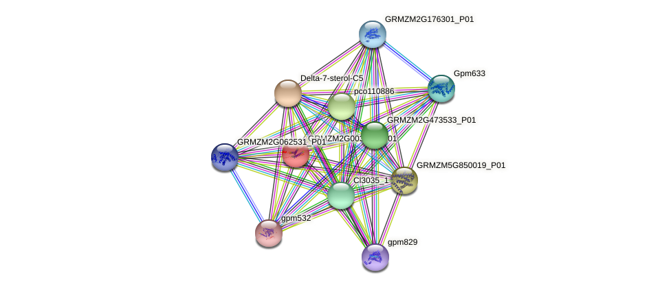 Zm.21920 protein (Zea mays) - STRING interaction network